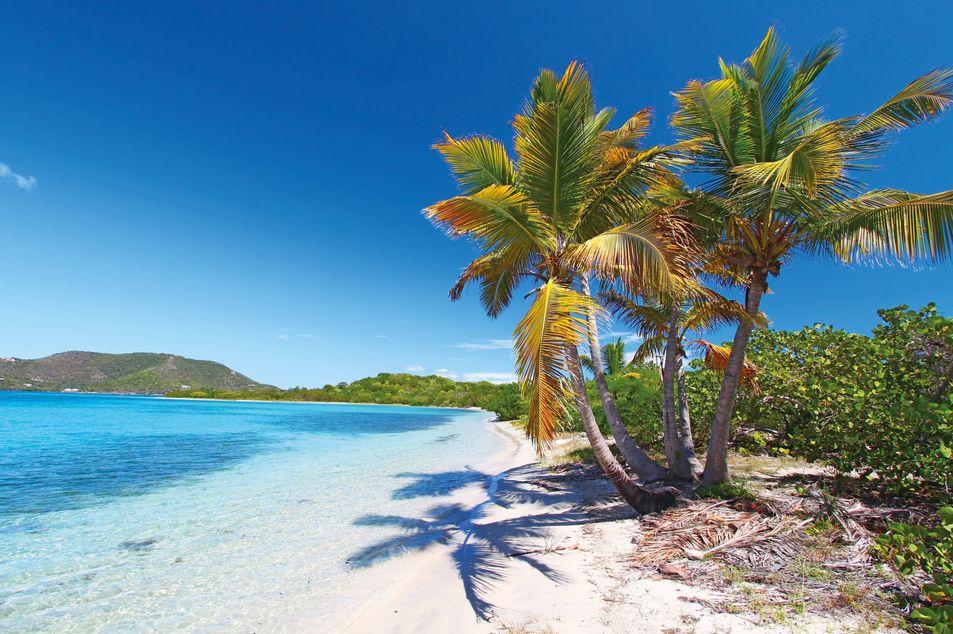 Strand auf Beef Island