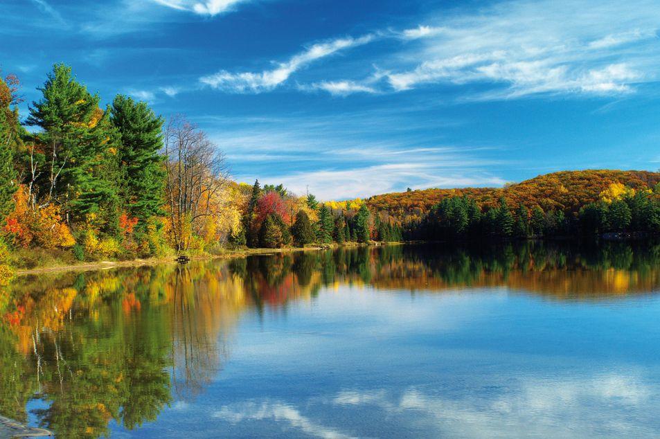 Herbst in der Region