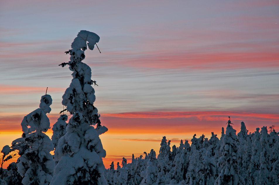 Nordischer Sommer, Lappland