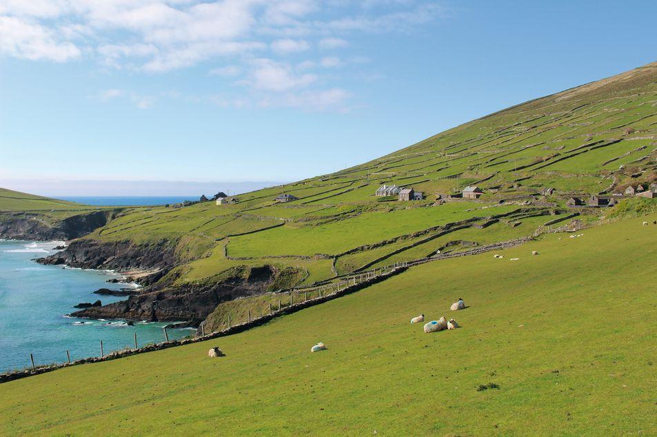Rest of Ireland