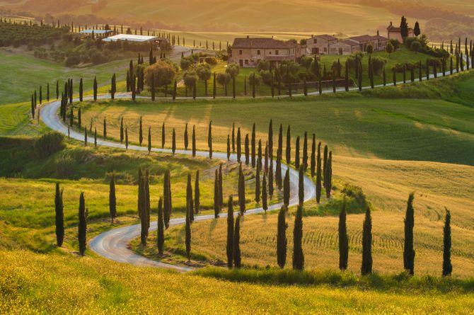 Authentische Toskana - Natur, Kultur und Genuss - inkl. Mietwagen, Provinz Florenz
