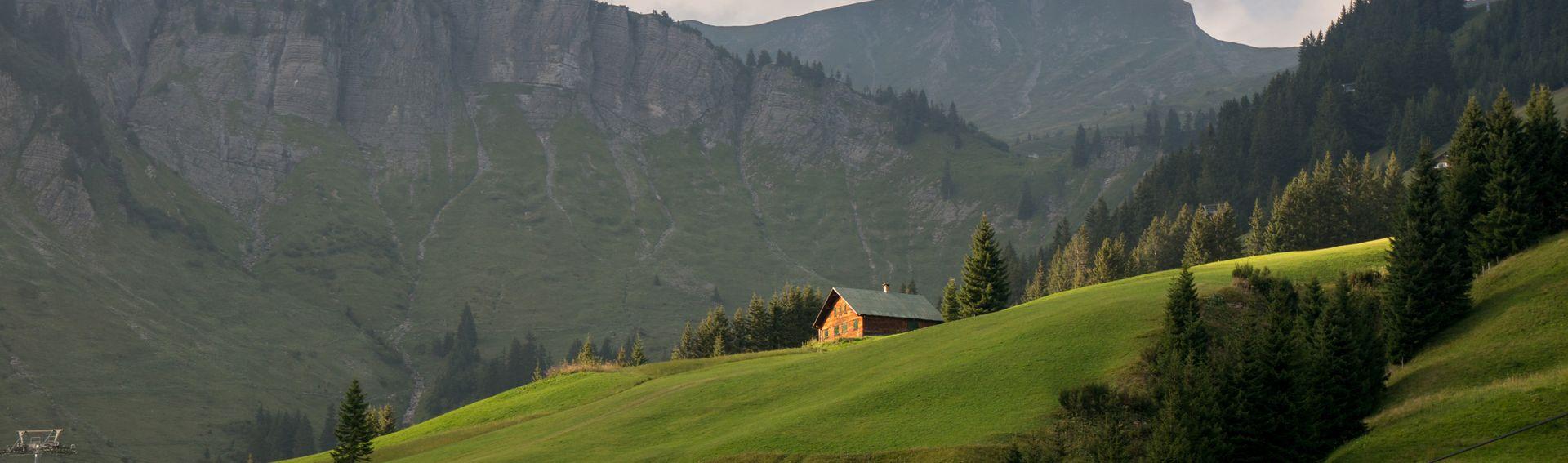 Damüls-Mellau-Faschina