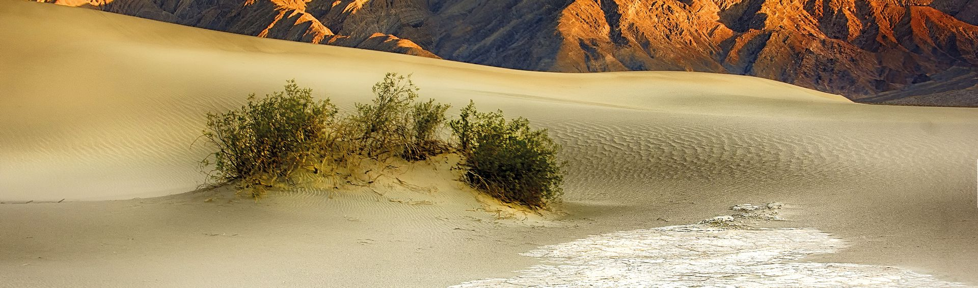 Parc national Death Valley