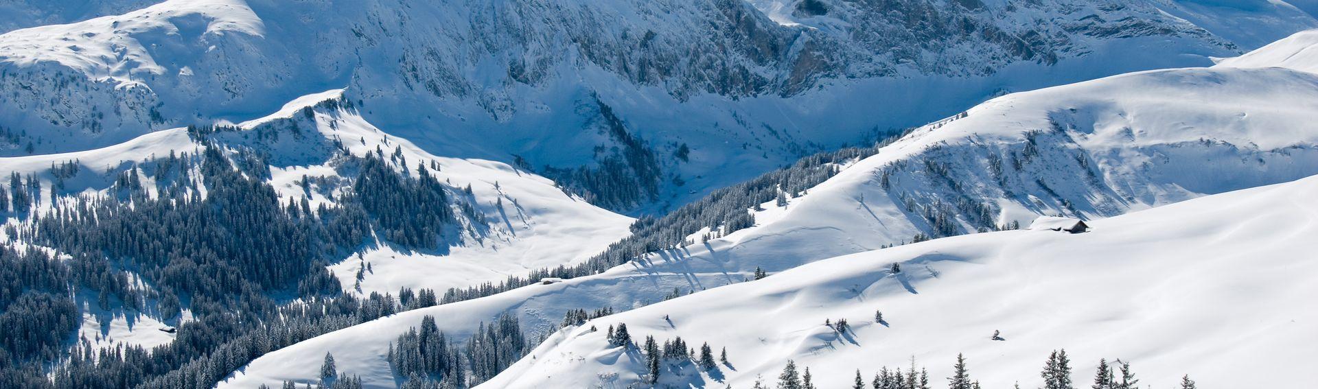 Region Bern & Berner Oberland