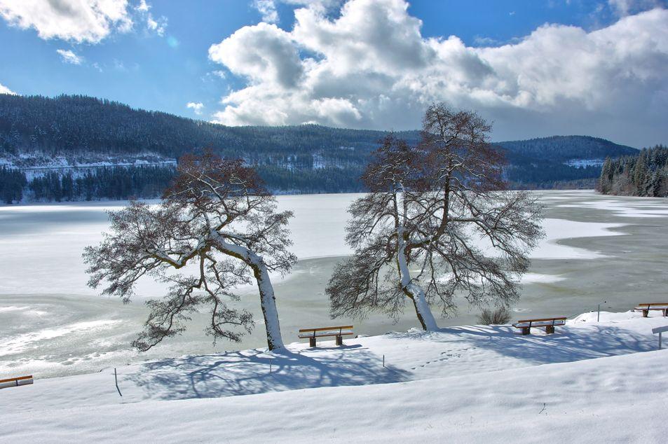 La Forêt-Noire en hiver