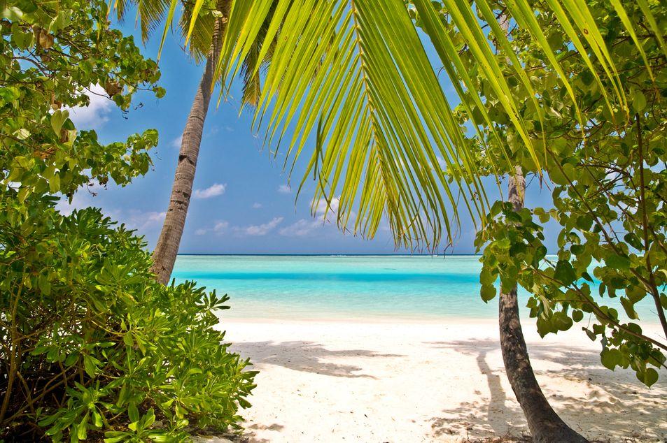 Malediven: fantastische Strände für Badeferien