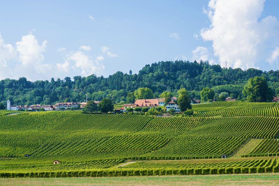 Landschaft bei Yverdon-les-Bains