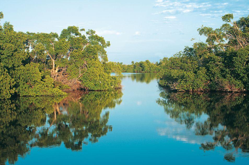 Fort Myers & Sanibel Island