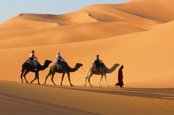 Wüstenluft schnuppern, Marrakesch