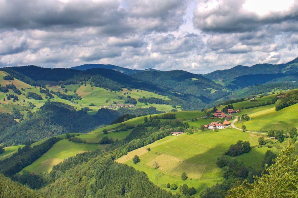 L'été dans le sud de la Forêt-Noire