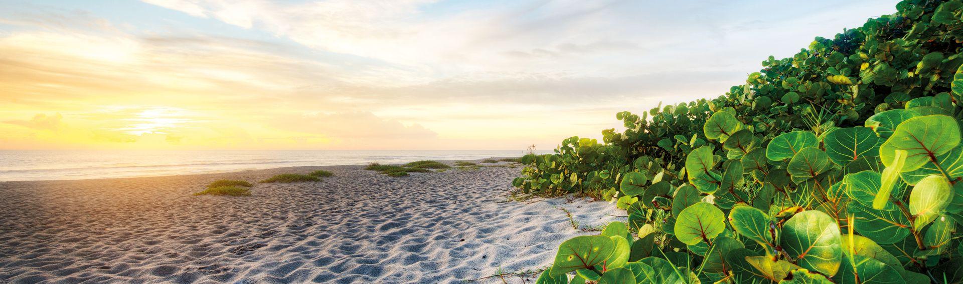 North Florida Beaches