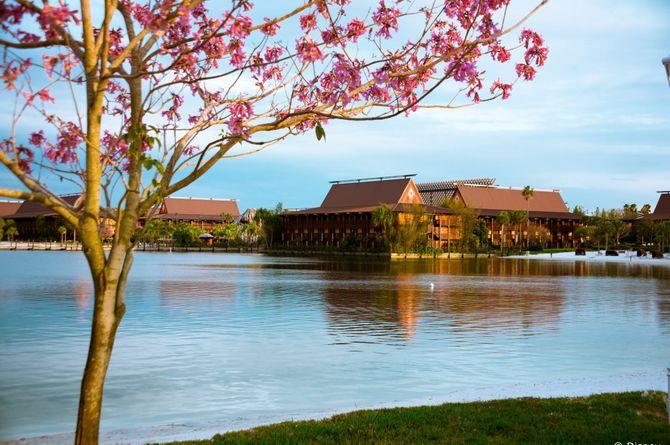Disney's Polynesian Resort Package, Orlando & Umgebung