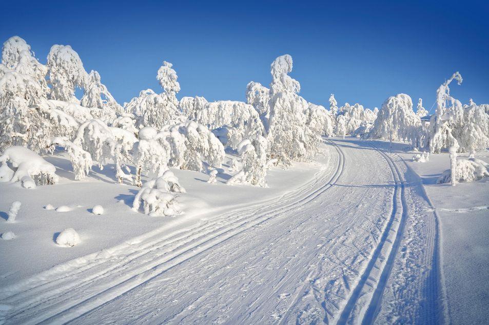 Paysage hivernal finlandais